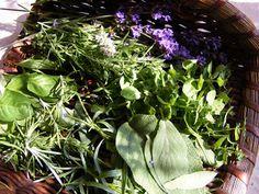 szeretetrehangoltan: Provence-i fűszerkeverék