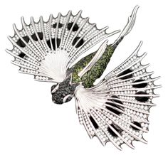 Stephen Webster 18-carat White Gold Couture Flying Fish Brooch with White Diamonds, Black Sapphires, and Green Tourmalines.