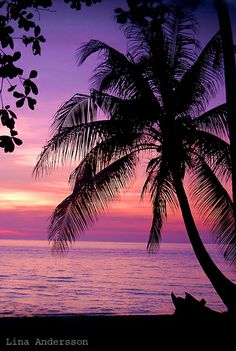 Purple Sunset :)