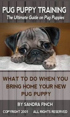 Pug Puppy Training: The Ultimate Guide on Pug Puppies, What to Do When You Bring Home Your New Pug Puppy by Sandra Finch. $4.99. 86 pages