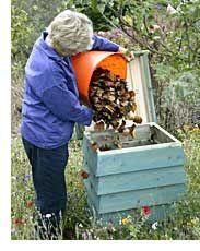 Composting 101 - Zombie Apocalypse preparation