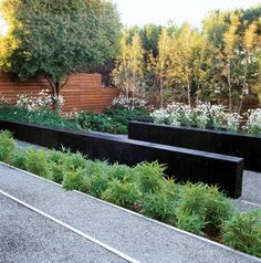 Perry Residence Landscape - Programs - AIA San Francisco