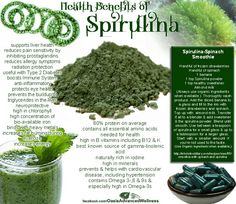 Health Benefits Of Spirulina Powder. Ok, you've certainly heard me mention before how important it is for us diabetics to take care of our eyes. Spirulina is an excellent supplement for those looking to improve their eye health Health And Nutrition, Health Tips, Health And Wellness, Nutrition Tips, Health Care, Herbal Remedies, Health Remedies, Natural Cures, Natural Health