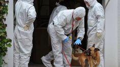 La Mafia  e`anche in tua citta       *       Die Mafia ist auch in deiner Stadt  : Zoll fängt Drogenlieferung für Vatikan ab