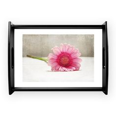 Softness in Pink Coffee Tray on CafePress.com