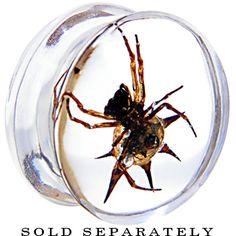 22MM Organic SPIDER Resin Saddle Plug #bodycandy #halloween #plugs $11.99