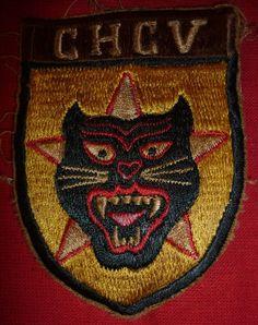 ARVN Rangers Patch Mekong Delta N 175 Tiger Force Rangers CHCV ~ Vietnam War
