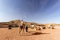 75 Aktivitäten gefunden für Hurghada Sightseeing