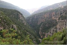 """Nahr Ibrahim Valley, non-end valley and Adonis valley (""""About thirty miles away, alo9ng the coast road to Byblos and then inland into the mountains, up towards the source of the Adonis. The road runs up the ridge on the north side of the valley, and somewhere between Tourzaya and Qartaba there's a tributary river called the Nahr el-Sal'q that goes tumbling down to meet he Adonis. Dar Ibrahim's in the middle of the valley, where the rivers meet.)"""