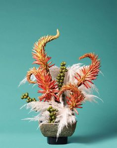 This Photographer Arranged Botanical Abortifacients Into Stunning Floral Designs in a Timely Show About a Woman's Right to Control Her Fertility (shown: Ann Shelton, The Mermaid, Wormwood (Artemisia sp.) Photo courtesy of Denny Dimin Gallery. Still Life Photography, Artistic Photography, Collections Photography, Creative Background, Ikebana, Fertility, Botany, Art World, Japanese Art