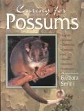 Caring for Possums