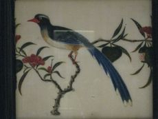 Allpress Antiques Furniture Melbourne Victoria Australia: A Century Chinese export framed painting of a bird on rice paper Melbourne Victoria, Victoria Australia, Rice Paper, Painting Frames, 19th Century, The Past, Chinese, Bird, My Favorite Things