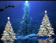 Beautiful colorful pictures and Gifs: Christmas - Navidad - Happy Holidays Images