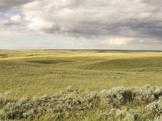 great plains - Google Search