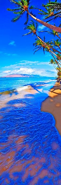 Maui Hawaii Palms Ocean West Maui Photograph - Maui Palms by James Roemmling Dream Vacations, Vacation Spots, Vacation Ideas, Places To Travel, Places To See, Travel Destinations, Places Around The World, Around The Worlds, All Nature