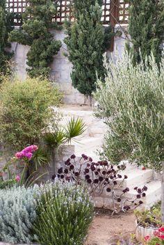 Drought tolerant native plants Crete Greece garden ; Gardenista