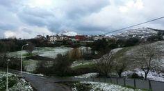 Nieve del cantabrico satuchi