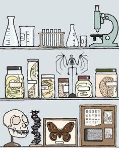 laboratory icons on a shelf