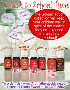 Young Living Essential Oils: The Golden Touch Collection: Respiratory, Digestion, Liver, Metabolism, Bronchitis, Wounds, Immune System.