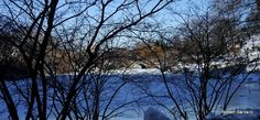 Winter 2014, Capstow Bridge Central Park NYC by Robert_Barzallo