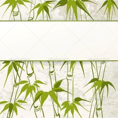 Bamboo with Leaves Pattern - Flowers & Plants Nature