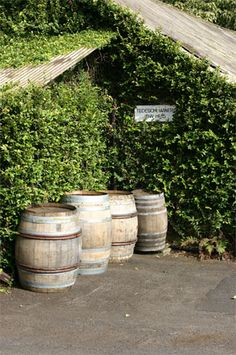 love old wine barrels to use in the garden