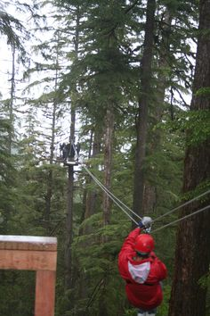 Zip-lining in Ketchikan, Alaska