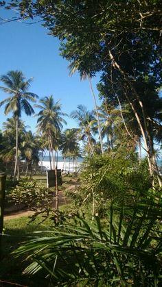 Itacare, , Bahia