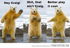 Wait, that's not Craig…