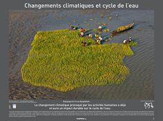 Le développement durable : pourquoi? : L'eau une ressource vitale/ Projet de Yann Arthus Bertrand…
