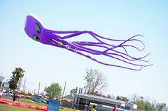 Liz. #KiteFestLA #westbatonrouge #louisianafestival #KiteFestival