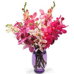 Makara Orchids  Google Image Result for http://img.giftstoindia24x7.com/ASP_Img/GTI0780.jpg