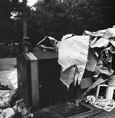 Barba ao Vento: Lixo #1