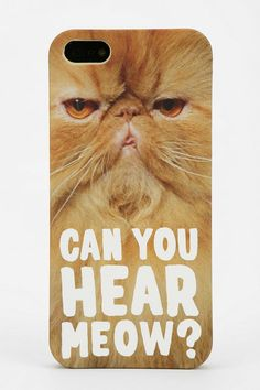 Can you hear meow?
