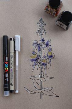 "Day 20: Paxariños (Pajarillos) ""Linaria triornithophora""  #InkTober #InkTober2016 #InkToberEspaña #FloraDaGaliza Inktober, Drawings, Day Planners, Sketches, Drawing, Portrait, Draw, Grimm, Illustrations"