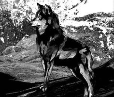 White Fang by Kako , via Behance