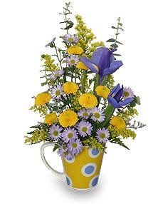 http://www.arlenesflowers.net/product/ao1809/cup-o-cheer
