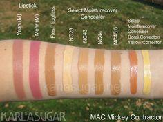 MAC-Mickey-Contractor-lips-and-concealer.jpg (800×600)