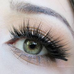 b5cdab08de3 Kiss Lash Couture Faux Mink Collection - Gala Eyelashes ~ Full Review in my  blog⤵
