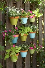 Plan the design on the fence using a tape measure. Mark the placement of the pot hangers. Using a cordless drill and wood screws, secure pot hangers to the fence. Pretty simple pretty pots to hang all your favorite flowers and greenery...pastel colors perfect for Easter!