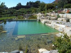 grumer gartengestaltung » photo gallery » naturpool, schwimmteich, Hause und garten