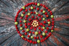 berry mandala - lara leaf