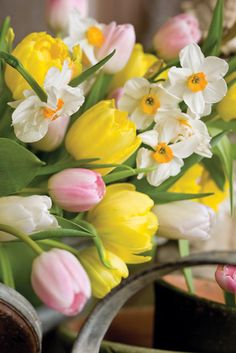 Spring is here; why not bring its beauty into your home?