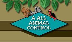 Wild animal control boise