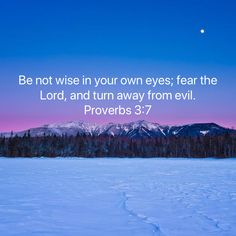 Proverbs Be not wise in your own eyes; fear the LORD, and turn away from evil. Scripture Verses, Bible Verses Quotes, Bible Scriptures, Faith Quotes, Biblical Quotes, Prayer Quotes, Christian Life, Christian Quotes, Soli Deo Gloria