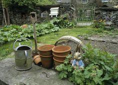 hilltop garden beatrix potter - Google Search