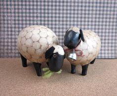 sheep gourds