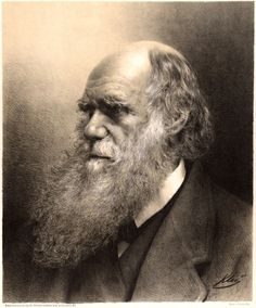 Charles Darwin: the Man and the Scientist