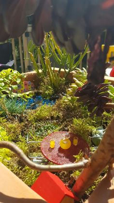 Our first fairy garden!
