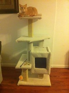 Ideas for our DIY cat scratch post / cat tree.i have always wanted to make one of these